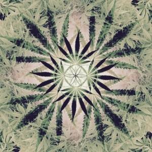 Cannabis mandala_soft colors