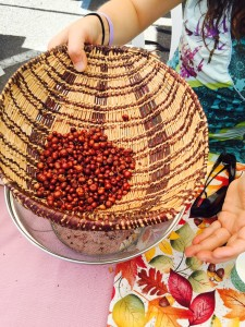 Manzanita berries_EB Fest 2016