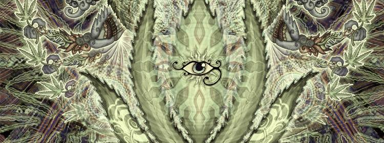 Cannabis eye, artist Nemo Boko