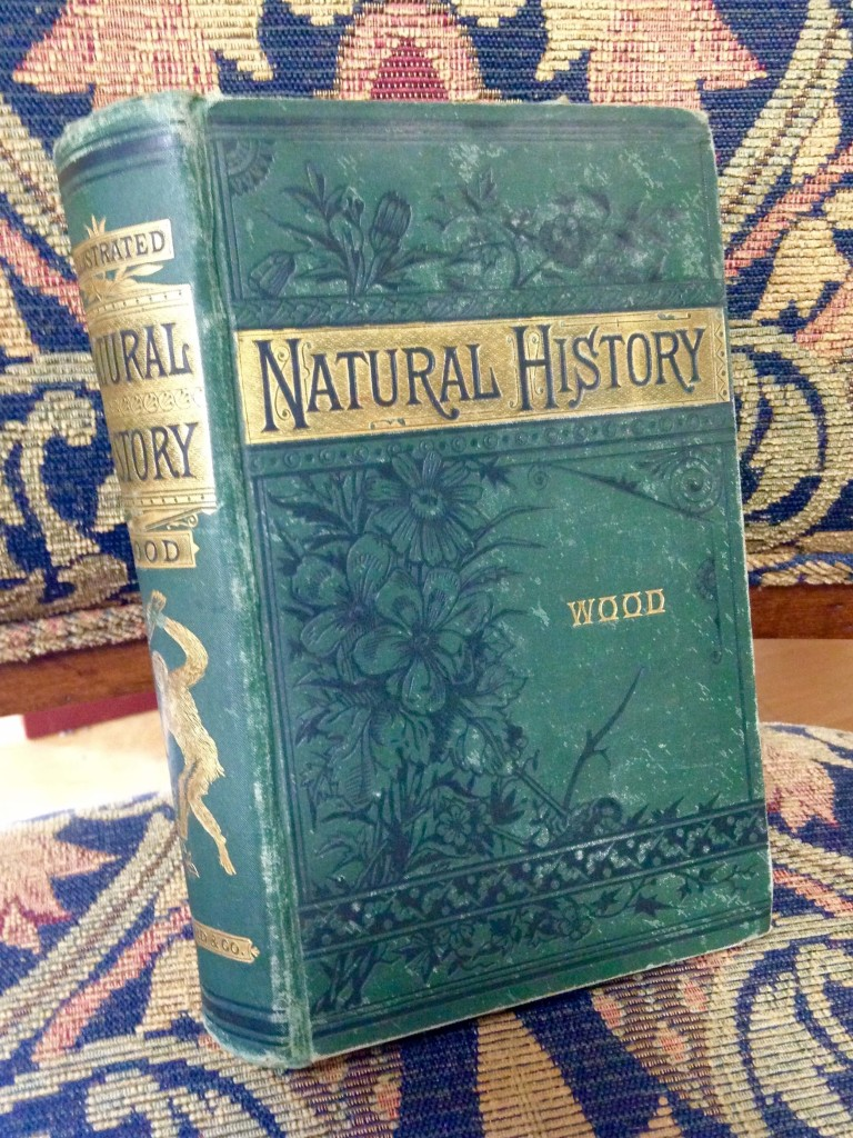 One of the beautifully illustrated antique books in our Ethnobotany Library