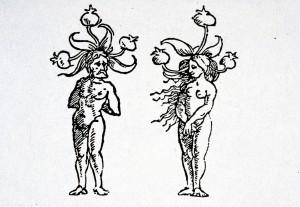 Mandrake personified